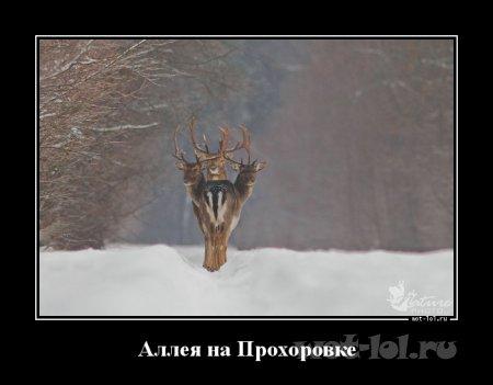 Юмор 1386193128_Alleya-na-Prohorovke_wot-lol.ru
