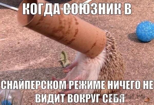 Юмор 1412707244_gu9qosuiodw