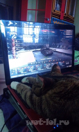 Моя кошка тоже играет в WoT!