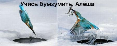 Учись бумзумить)))