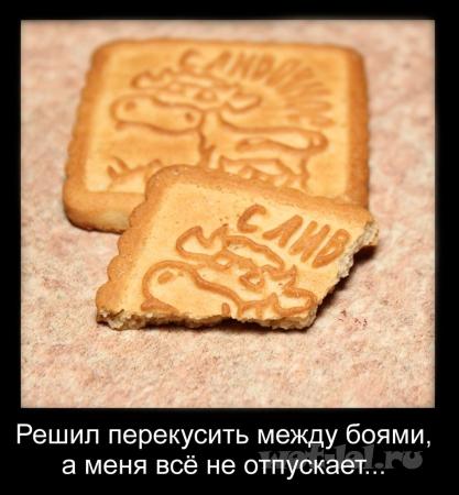 Печенька