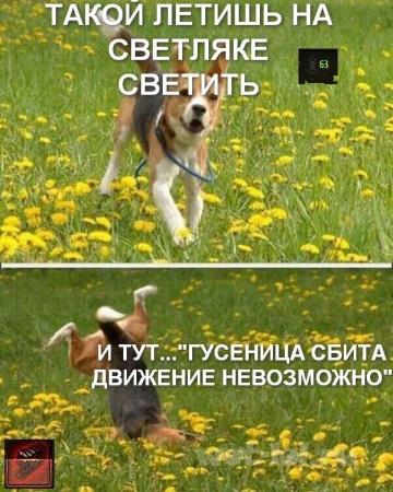 Жизненно=)