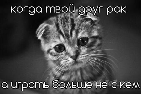 Когда твой друг