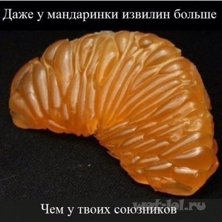 Даже у мандаринки