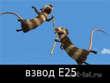 Взвод Е25
