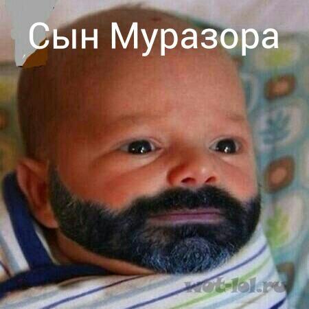 Сын Муразора