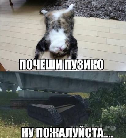 Пузико и новая физика