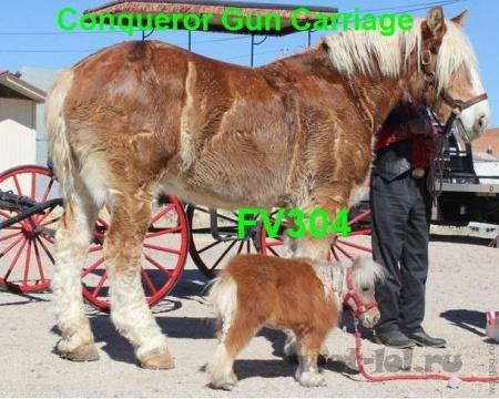 Конь и очень маленький конь