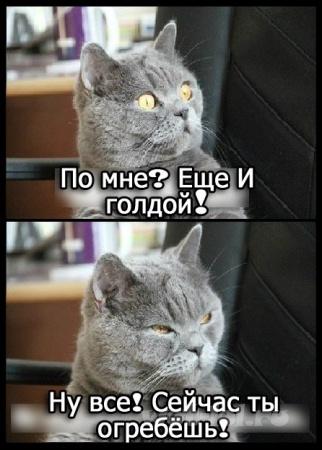 По мне?