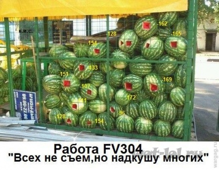 FV304