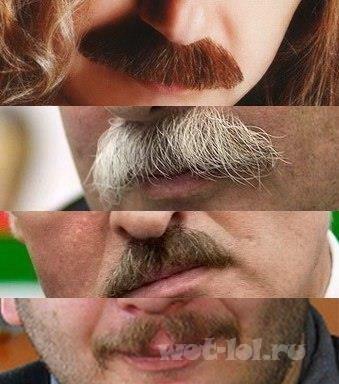 Эти усы я узнаю из тысячи