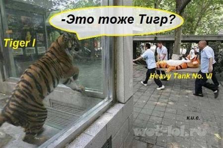 Это тоже тигр?