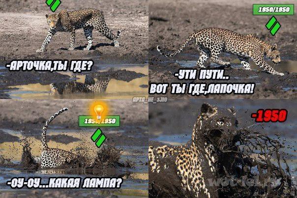 Вся суть Леопарда