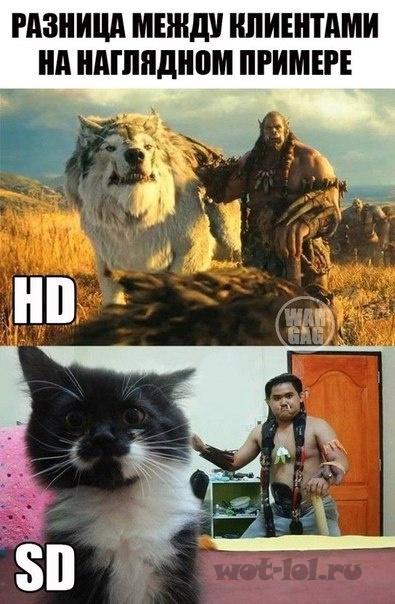 HD и SD