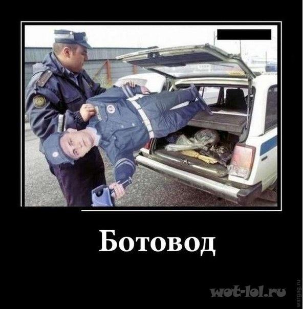 Ботовод