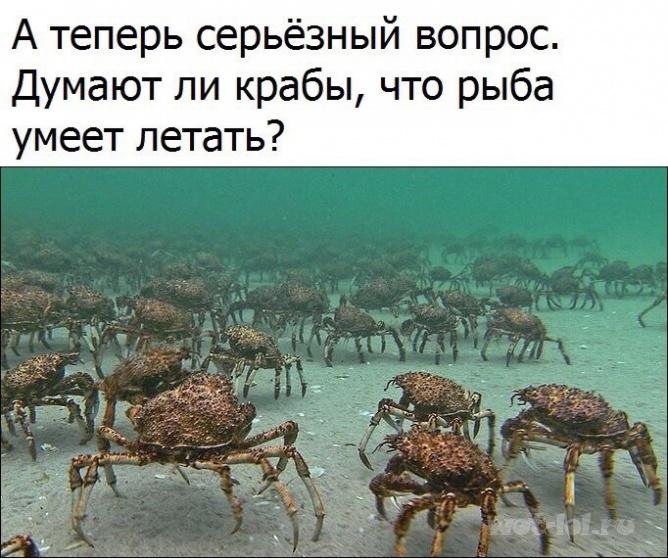 Серьезный вопрос)