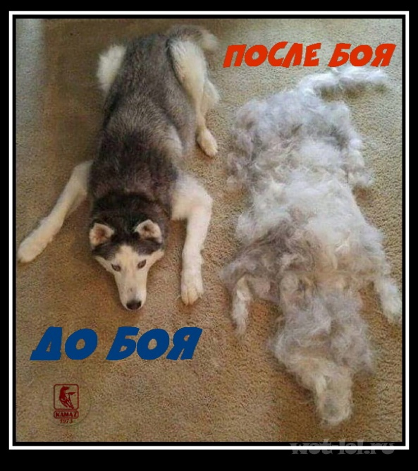 До и после....